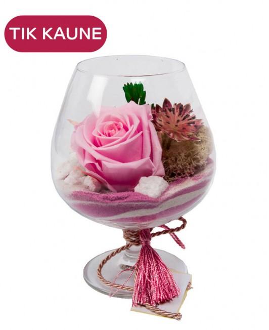 Rožinių miegančių rožių kompozicija
