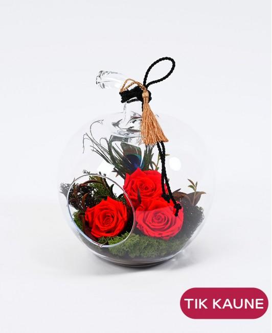 Miegančių rožių kompozicija stikliniame obuolyje