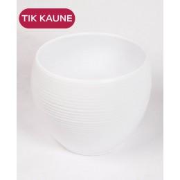 Baltas keramikinis vazonas