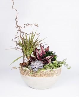 Didelė augalų kompozicija 2