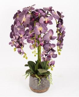 Violetinė dirbtinė orchidėja
