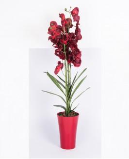 Dirbtinė orchidėja vazone