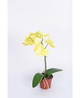 Maža dirbtinė orchidėja