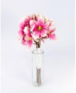 Dirbtinė magnolija