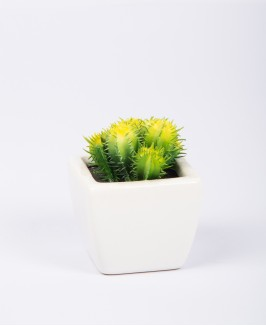 Mažas dirbtinis kaktusas