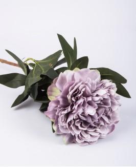 Violetinis bijūnas