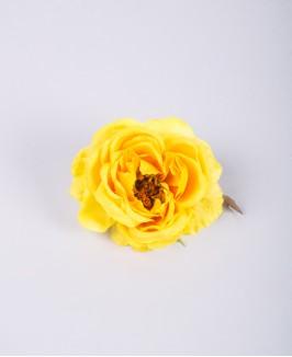 Rožės žiedas (geltonas)
