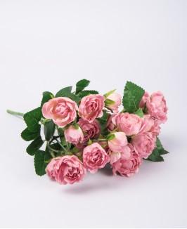 Rožinės spalvos rožytės