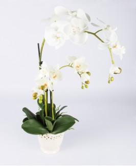 Dirbtinė balta orchidėja