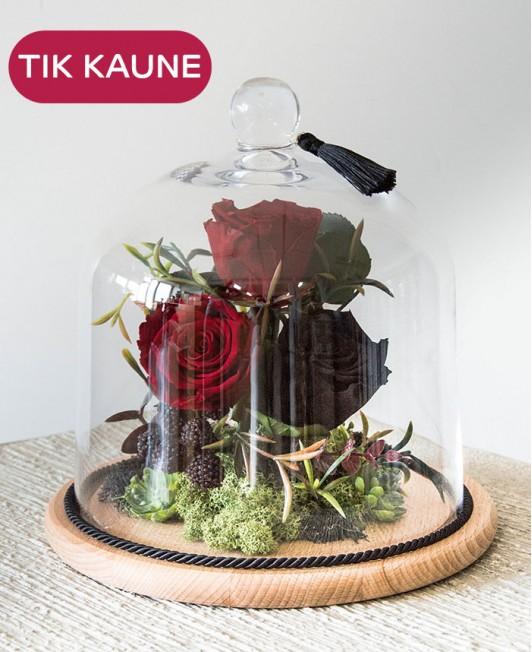 Miegančių rožių kompozicija po stiklu