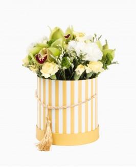 Geltonų atspalvių gėlės dėžutėje