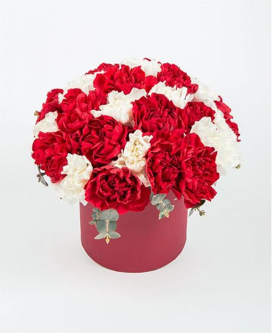 Gėlių dėžutė su raudonais ir baltais gvazdikais