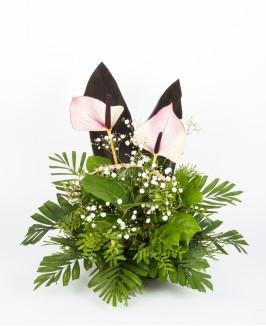 Gedulinga gėlių kompozicija su anturiu