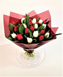 Raudonos ir Baltos tulpės