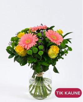 Rožių ir gerberų puokštė su santiniais