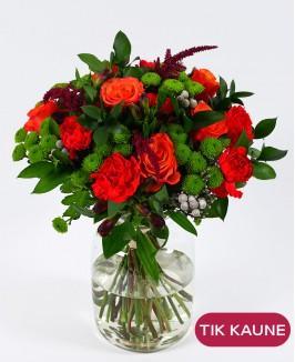 Ryškių gvazdikų ir rožių puokštė su alstromerijomis