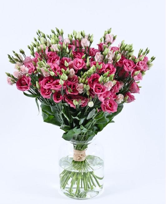 Rožinės spalvos eustomos