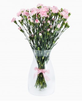Rožinės spalvos gvazdikėliai