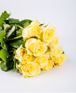 Geltonos rožės