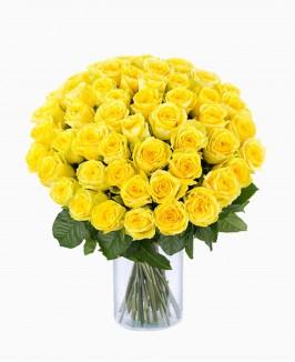 Geltonos spalvos rožės