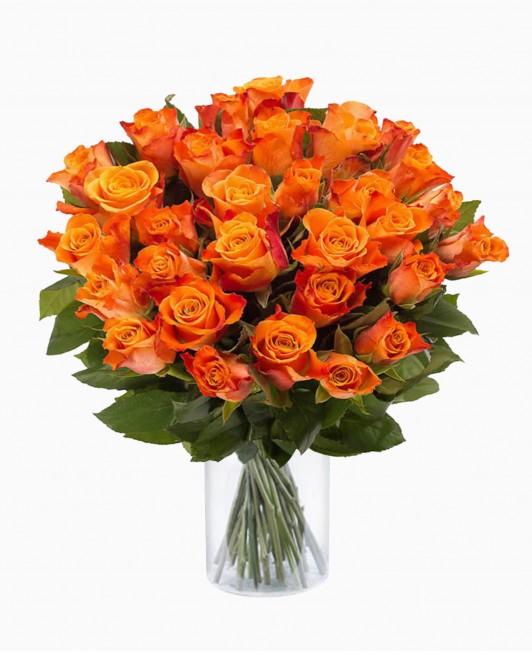 Oranžinės spalvos rožės