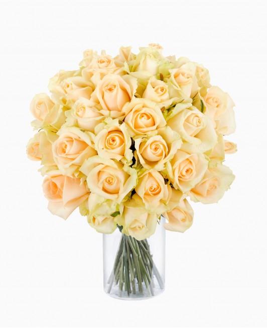 Šviesios spalvos rožės