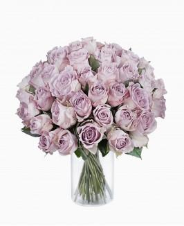 Šviesiai violetinės spalvos rožės