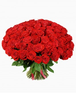 100 vnt. raudonos spalvos rožių