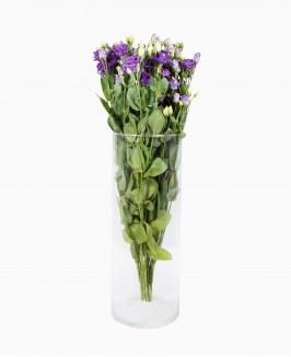 Violetinės spalvos eustomos