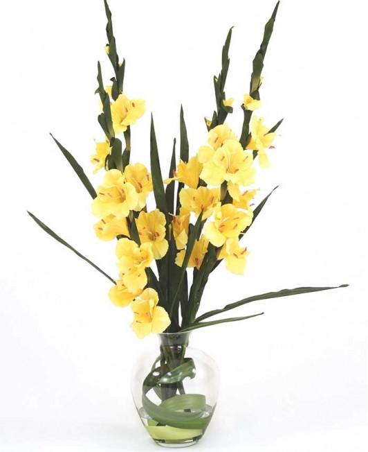 Geltoni kardeliai (gladiolės)