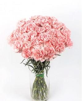 Rožinės spalvos gvazdikai