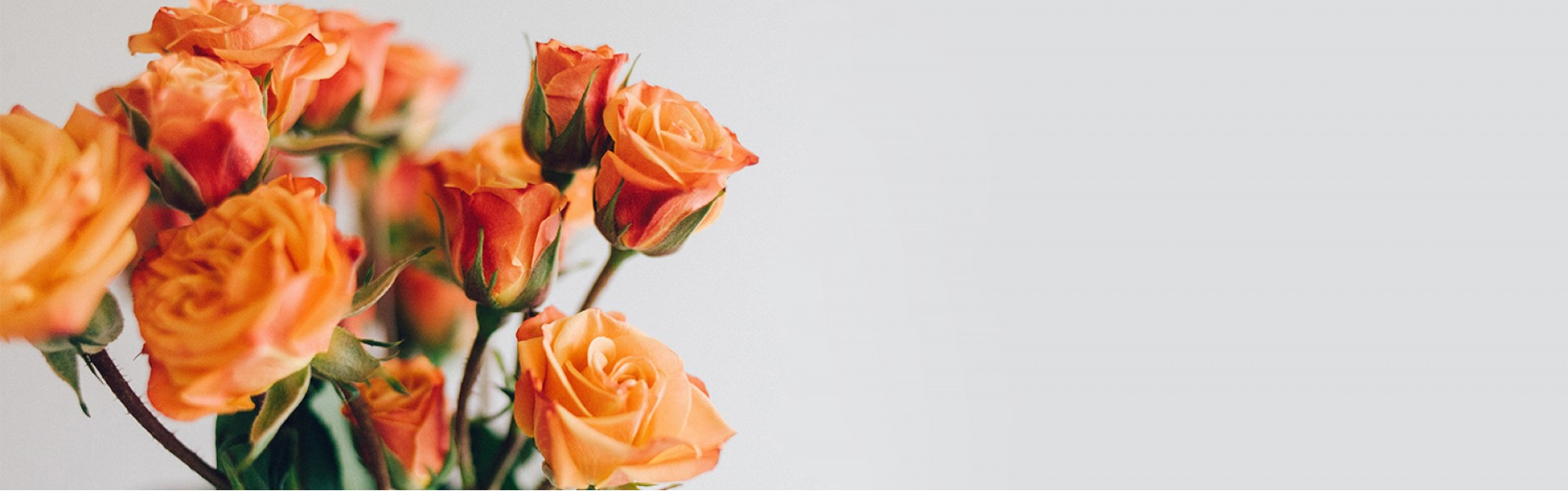 Gėles pristatome visoje Lietuvoje. Užsisakyk➔